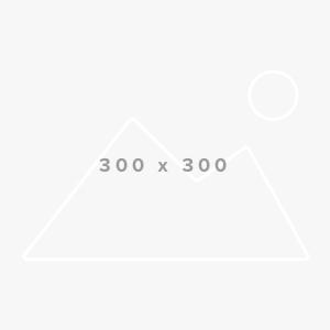 Board Member 300×300